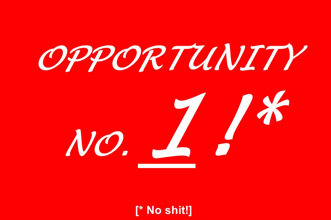 OPPORTUNITY NO. 1!* [* No shit!]